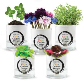 Two-piece ceramic planter with glass water reservoir and 2 hydroponic wicks. Featuring your full color logo or design. 3 seed packets to choose from.