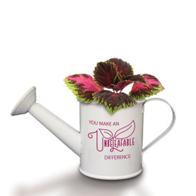 A Mini White Watering Can Grow Kit Featuring The Inspirational Message: You Make An Unbeleafable Difference. Grows Coleus