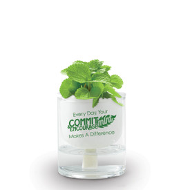 Self-Watering Plant Kit Includes A Mint Seed Packet. Message Reads: Your Commit-Mint & Encourage-Mint Makes A Difference.